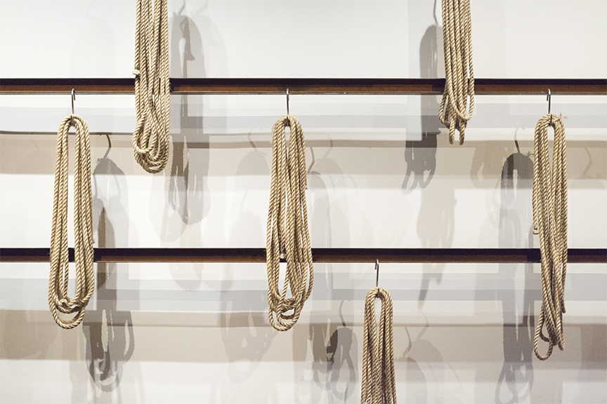 Photograph of ropes hanging on hooks on one of the walls in MONA